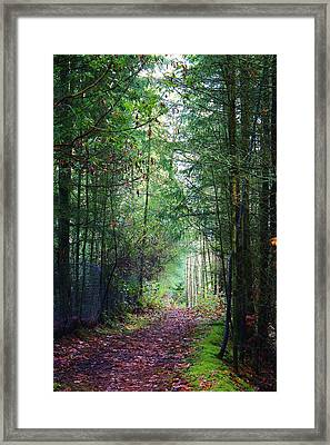 Path Of Adventure Framed Print by Bruce Bley