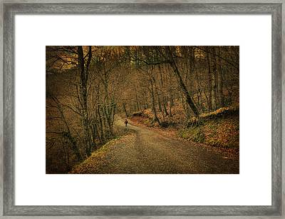 Path Framed Print by Taylan Soyturk
