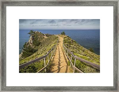 Path To Muir Beach Overlook Framed Print by Adam Romanowicz