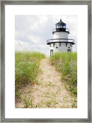 Path To The Lighthouse Framed Print by Edward Fielding