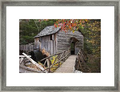 Path To The Mill Framed Print by Andrew Soundarajan