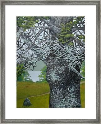 Path To Wyeth's Grave Framed Print by Jason Sawtelle