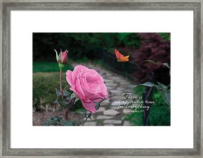 Pathway Framed Print by Sarah Christian