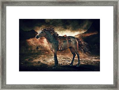 Patience Bay Horse Framed Print by Shanina Conway