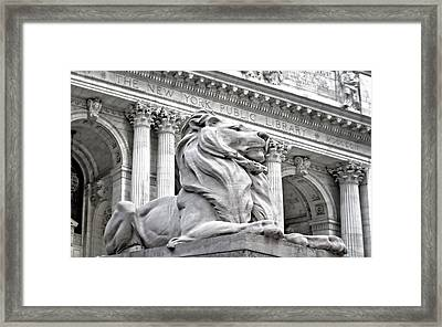 Patience The Nypl Lion Framed Print by Susan Candelario