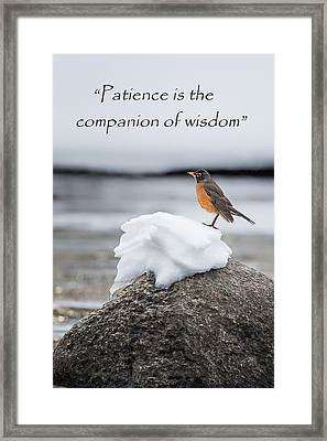 Patiently Waiting Framed Print by Bill Wakeley
