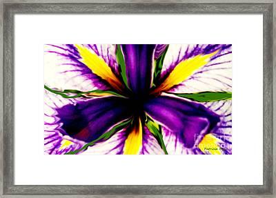 Patricia Bunk's Iris  Framed Print by Patricia Bunk
