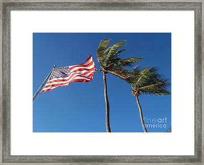 Patriot Keys Framed Print by Carey Chen