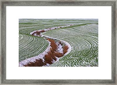 Patterns 2 Framed Print by Don Hall
