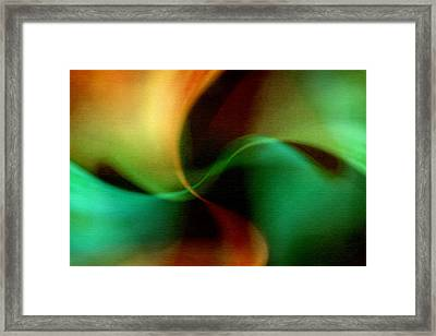 Patterns In Nature No.2 Framed Print by Bonnie Bruno
