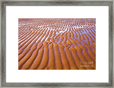 Patterns In The Sand Framed Print by Diane Diederich