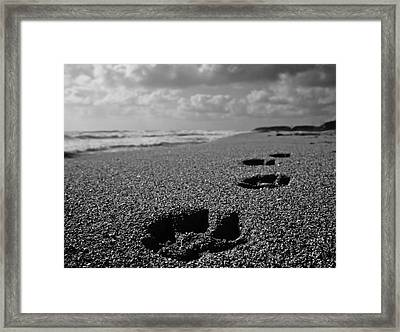 Paw Prints In The Sand Framed Print by Tracey McQuain