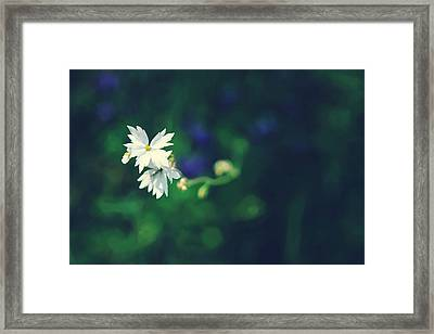 Peace For Annie Framed Print by Laurie Search