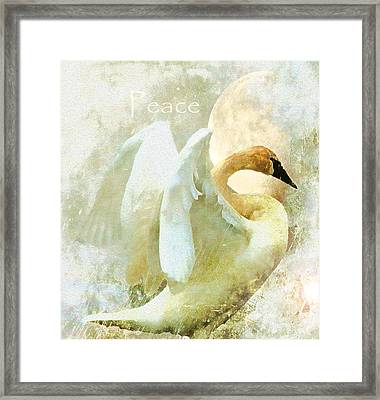 Peace Framed Print by Kathy Bassett