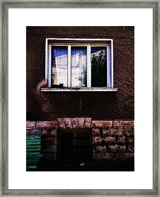 Peace Framed Print by Lucy D