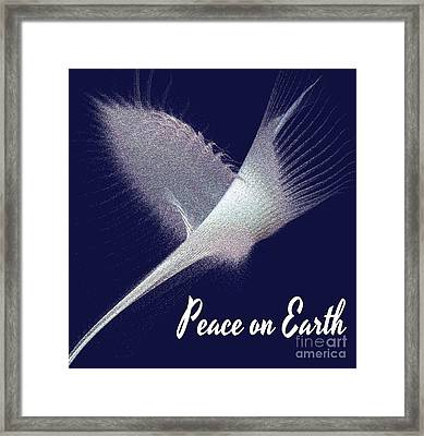Peace On Earth Dove Of Love Framed Print by Gail Matthews