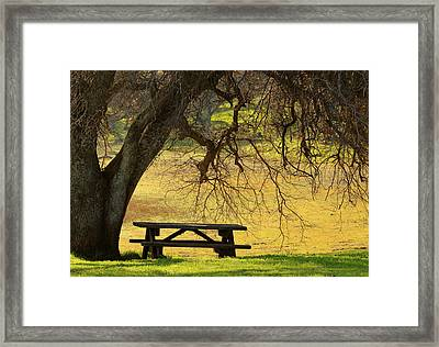 Peace  Framed Print by Rima Biswas
