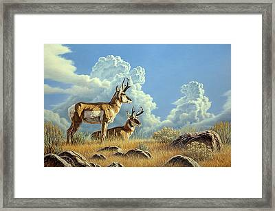 Peaceful Afternoon Framed Print by Paul Krapf