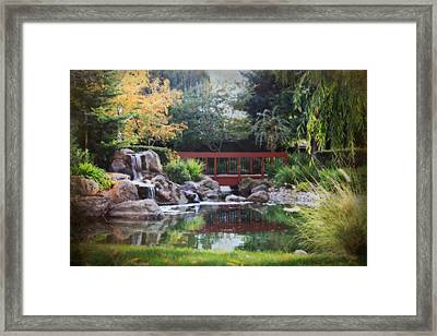 Peaceful Dreams Framed Print by Laurie Search