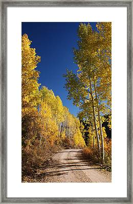 Peaceful Fall Road Framed Print by Michael J Bauer