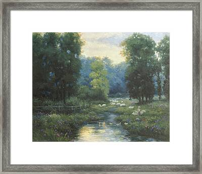Peaceful Framed Print by Ghambaro
