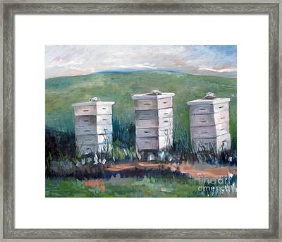 Peaceful Homes Framed Print by Rebecca Myers