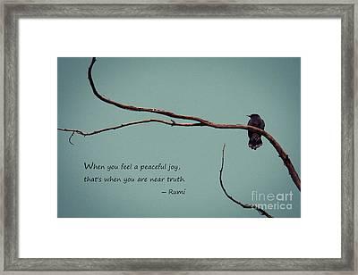 Peaceful Joy Framed Print by Stella Levi