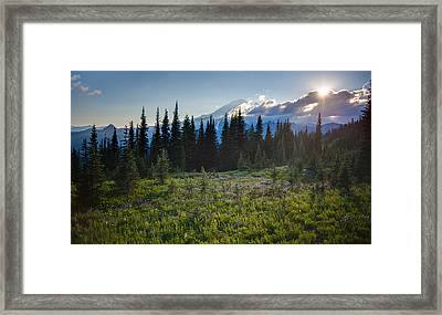 Peaceful Mountain Flowers Framed Print by Mike Reid