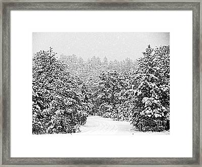 Peaceful Path Framed Print by Barbara Henry