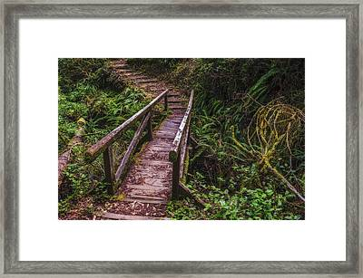 Peaceful Path Framed Print by Loree Johnson