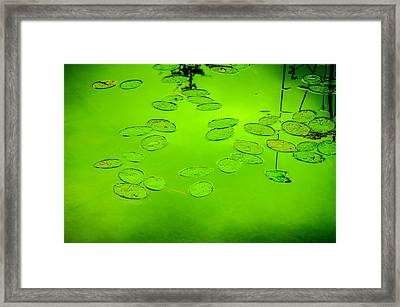Peaceful Reflections 6 Framed Print by Roxy Hurtubise