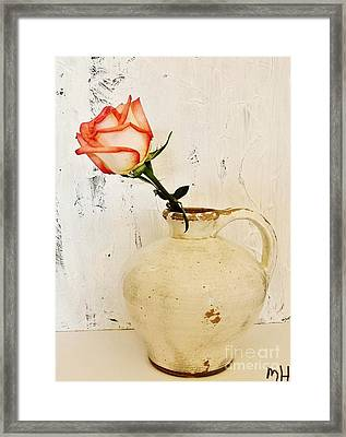 Peach Trim Rose In Pottery Framed Print by Marsha Heiken