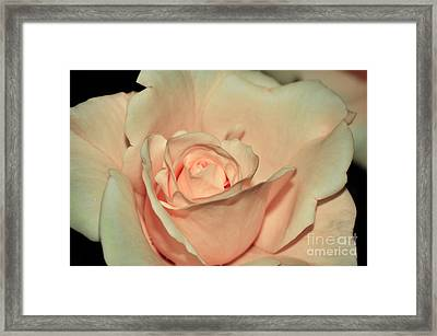 Peaches And Cream Framed Print by Kaye Menner