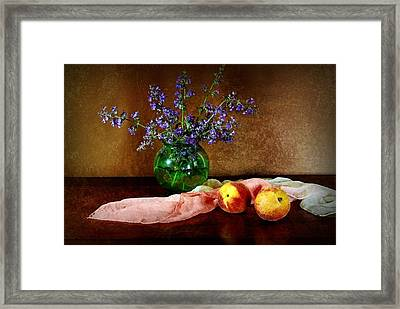 Peaches And Silk Framed Print by Diana Angstadt