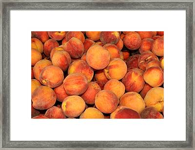 Peaches Framed Print by Diane Lent