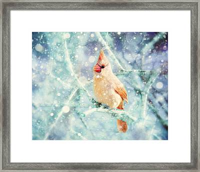 Peaches In The Snow Framed Print by Amy Tyler