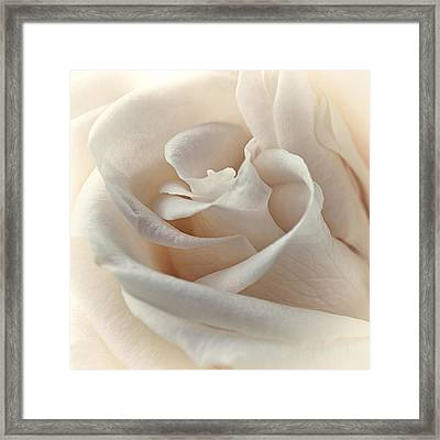 Peaches N Cream Framed Print by Darlene Kwiatkowski