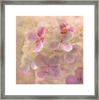 Peachy Pink Floral Framed Print by Angie Vogel