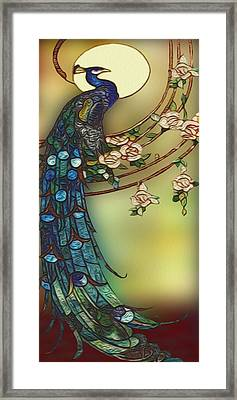Peacock 2 Framed Print by Jack Zulli