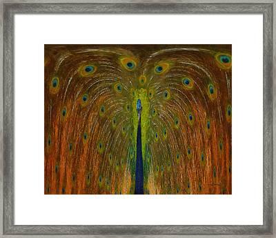 Peacock Fountain Framed Print by Ernie Echols