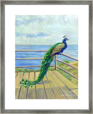 Peacock On The Deck Framed Print by Catherine Garneau