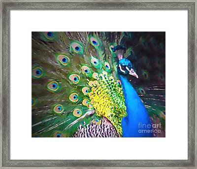 Peacock Framed Print by Tatjana Popovska