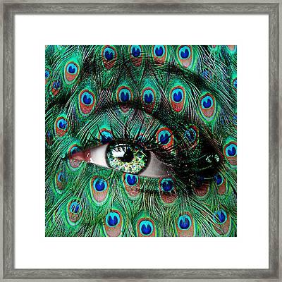 Peacock Framed Print by Yosi Cupano