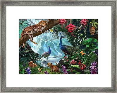 Peacocks And Leopards Framed Print by Steve Crisp