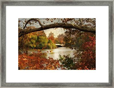 Peak Autumn In Central Park Framed Print by Jessica Jenney