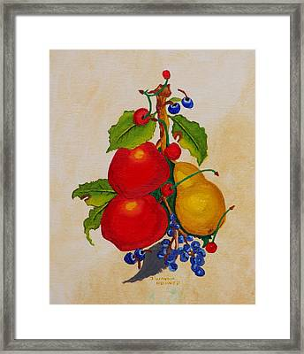 Pear And Apples Framed Print by Johanna Bruwer