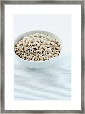 Pearl Barley Framed Print by Gustoimages