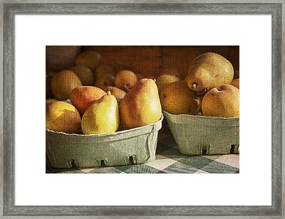 Pears Framed Print by Caitlyn  Grasso