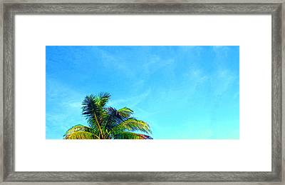 Peekaboo Palm - Tropical Art By Sharon Cummings Framed Print by Sharon Cummings