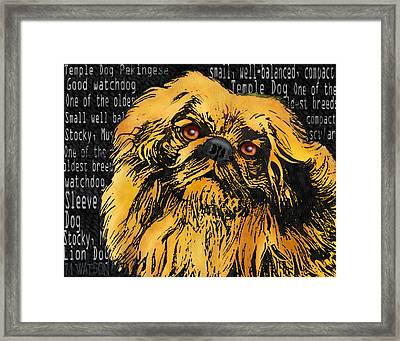 Pekingese - Worded Framed Print by Marlene Watson